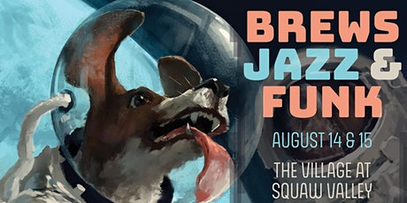 Brews, Jazz & Funk Fest Presented by FiftyFifty Brewing Co | August 14 & 15 tickets