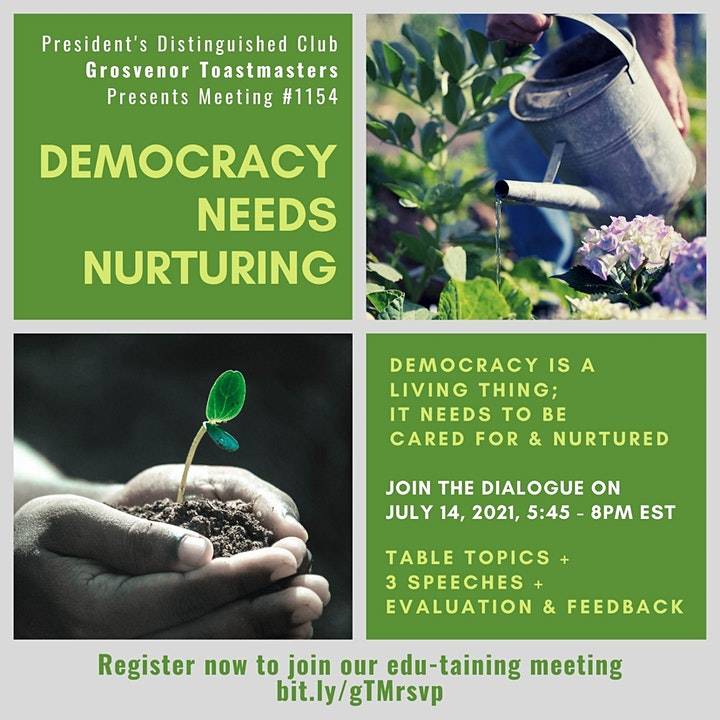 gTM Online Club Meeting #1154 - Theme: Democracy Needs Nurturing image