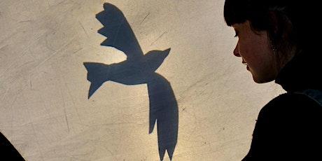 Maral, het meisje dat in een vogel veranderde 8+ - KRIJT tickets