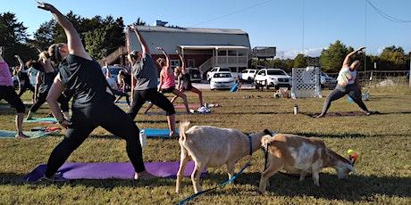 August Saddlebock Brewery Greedy Goat Yoga! tickets