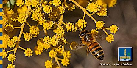 Sustainable Living: Backyard beekeeping tickets