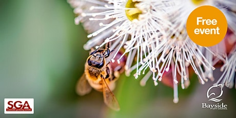 Introducing native pollinators to your garden tickets