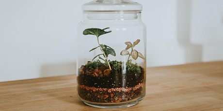 Terrarium making workshop for adults tickets