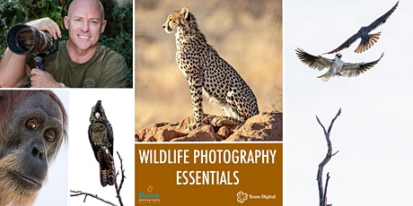 Wildlife Photography Essentials (September 2021) tickets