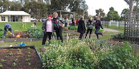 Wicking Garden Workshop - Sunbury Community Garden tickets
