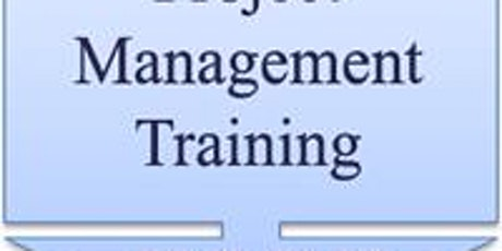 PMP live virtual 2 Weekend training fit for  Europe, Africa  & UAE timezone tickets