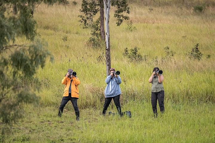 Birds of Prey Experience, Brisbane image