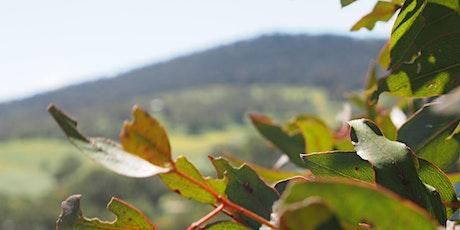 Hills Biodiversity + Howard Vineyard- Planting Day tickets