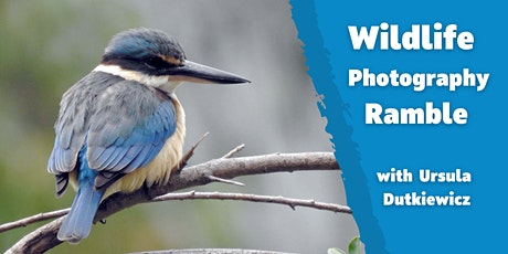 Wildlife Photography Ramble with Ursula Dutkiewicz tickets