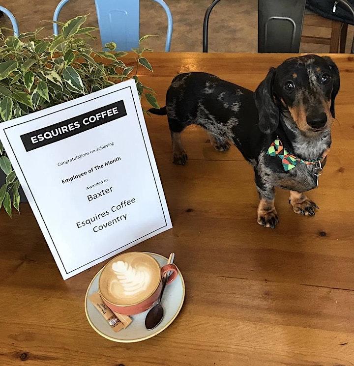 Baxter's Dachshund Cafe image