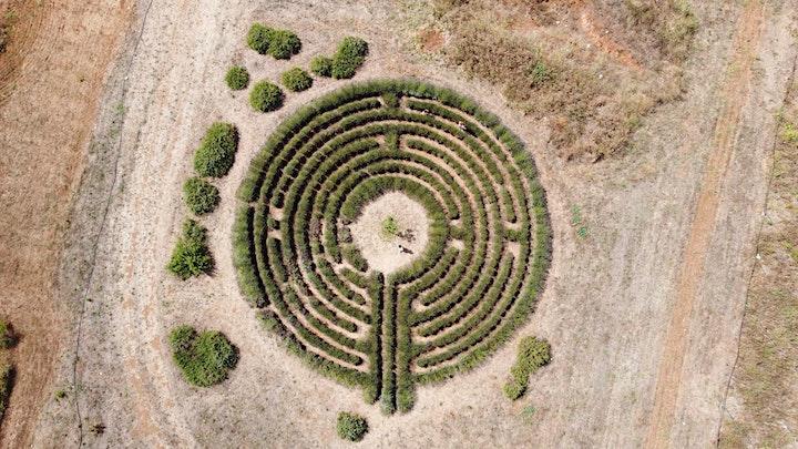 Immagine I Giardini di Pomona - APERITOUR AL TRAMONTO