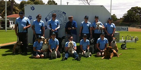 Albany All Breeds Dog Club - Pet Dog Skills Level 2 - Round Four tickets
