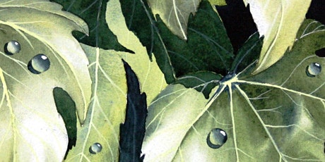 Watercolour Workshop- Water droplets on Autumn Leaves by Steve Coates tickets