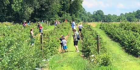 Agriberry Farm Visit Day tickets