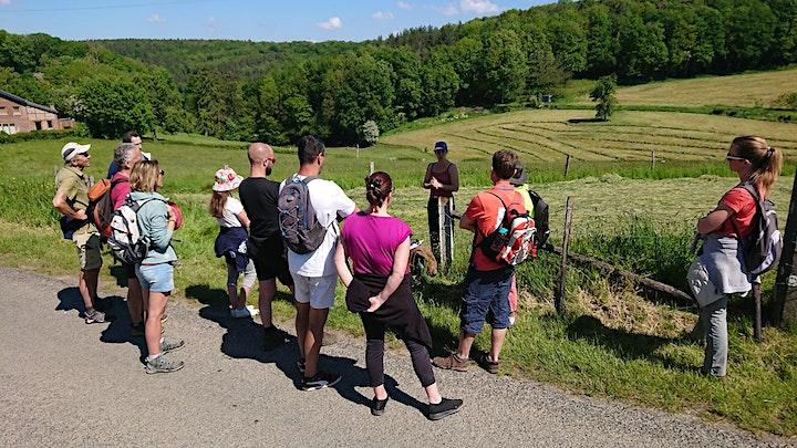 Image pour Promenade à Hayen
