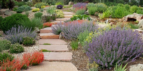 High and Dry! Drought Tolerant plants for the Pikes Peak region tickets