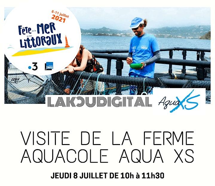 Visite de la ferme aquacole Aqua XS image