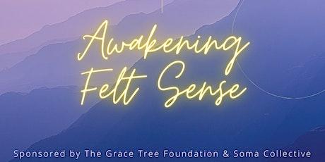 Awakening Felt-Sense Project tickets
