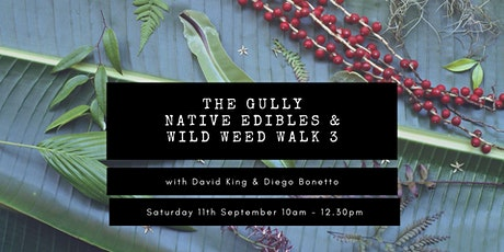 The Gully Native Edibles & Wild Weeds Walk with David King & Diego Bonetto tickets