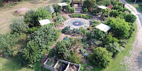 Sustainable Gardening Australia Workshops tickets