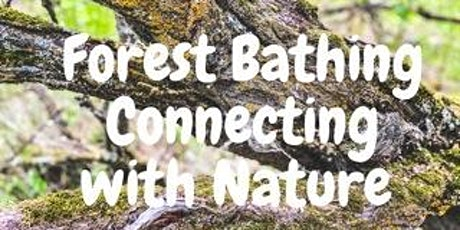 Forest Bathing tickets
