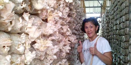Copy of [FREE WEBINAR] How To Start A Mushroom Farm Business tickets