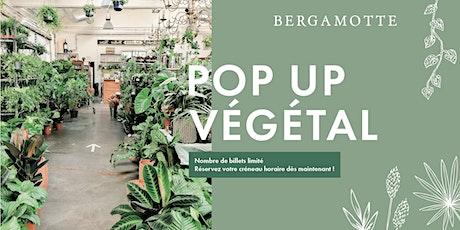 Bergamotte Pop-up Végétal // Lausanne billets