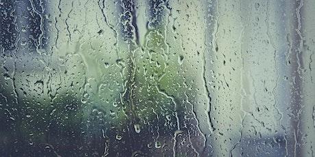 Lunchtime Water Series: Florida's Rainy Season (webinar) tickets