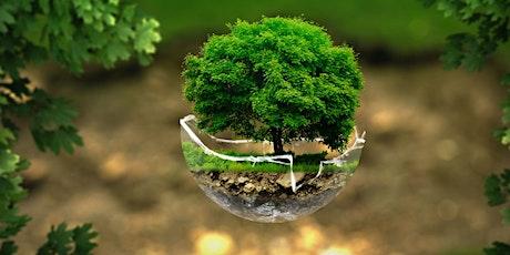 Exposomes : Comment l'environnement façonne la biologie humaine ? billets