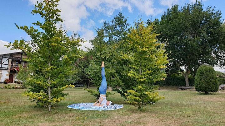 Imagen de Yoga, Baño de Bosque y Respiración Consciente