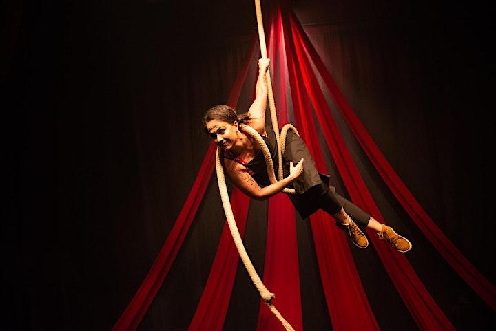 Imagem do evento Reciclagem e qualificação dos formadores de circo no DF