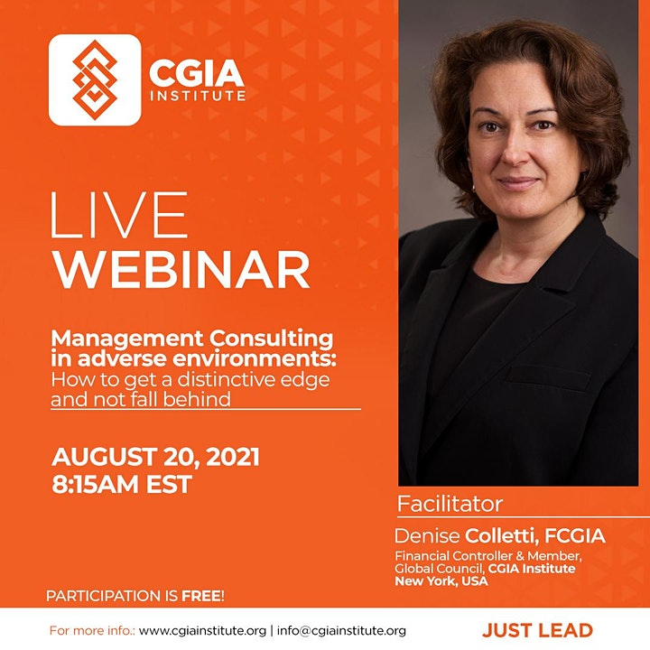 Management Consulting Webinar image