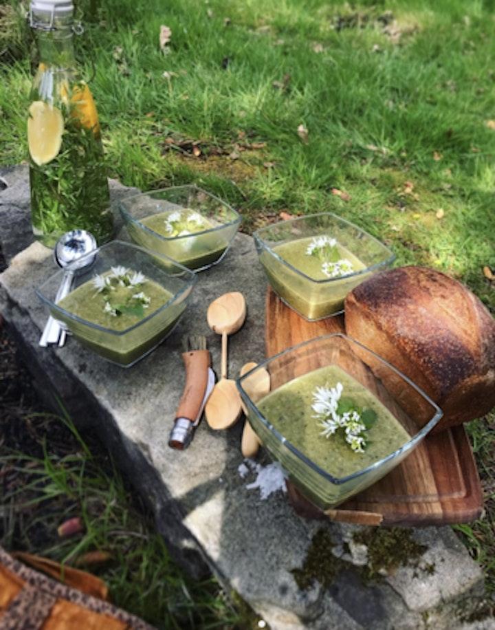 Celtic Foraging and Wild Medicine Workshop in Wales image