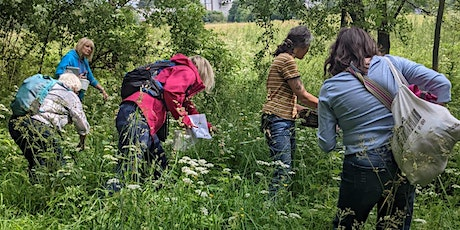 Summer Foraging and Wild Food Picnic, North Glasgow tickets