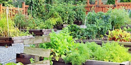 Growing Herbs in the Home Vegetable Garden tickets