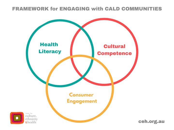 Cultural Competence and  Consumer Participation image