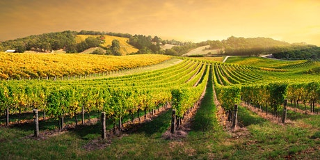 Tuesday Tutorials: Climate in Wine - 2nd November 2021 6.30pm tickets