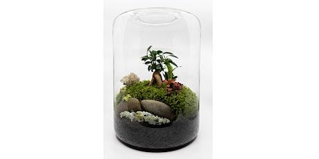 Build your own terrarium workshop tickets