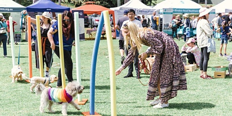 Pawsitive Steps - Mind, Doggy and Spirit Festival tickets
