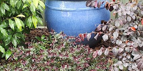Spring Garden High Tea tickets