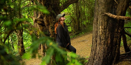 Shinrin Yoku (Forest Bathing) at Saltbox Hill nature reserve tickets