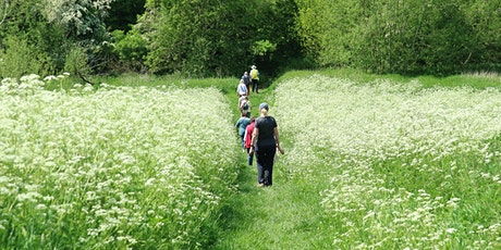Group Walks - Castle Hill Country Park (Anstey Quarter) tickets