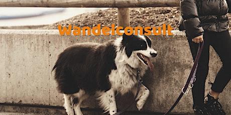 Individuele wandelconsultatie: Rustig op stap met je hond tickets