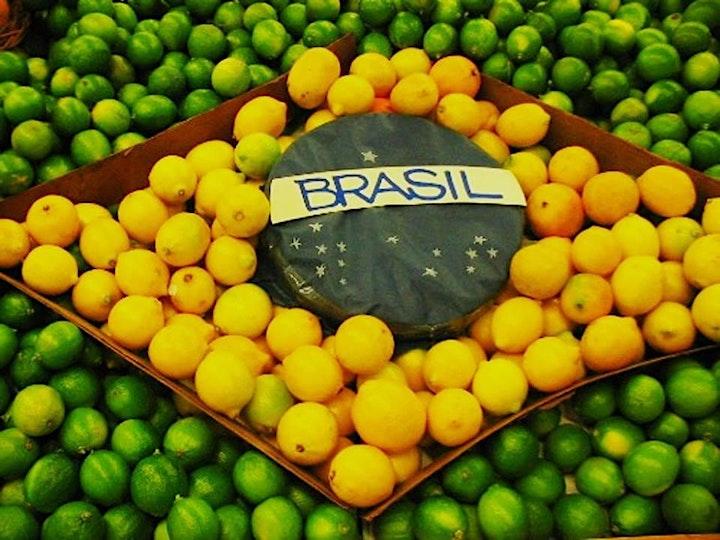 Image pour Tout ce que vous devez savoir pour organiser votre voyage au Brésil