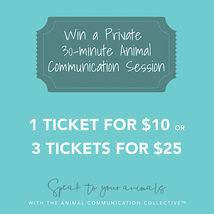 Speak To Your Animals with The Animal Communication Collective ™ image