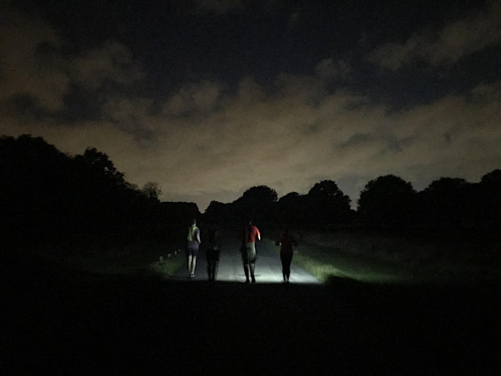 Property & Construction Networking Event: Head Torch Trail Run Richmond image