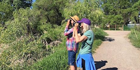 Monthly Bird Walk &  Bird Banding Presentation tickets