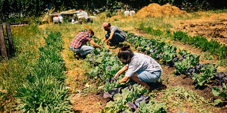 Back to School Food Systems Field Day tickets