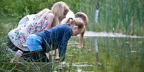 Pond Explorers (Age 7+) at College Lake 12 Aug tickets