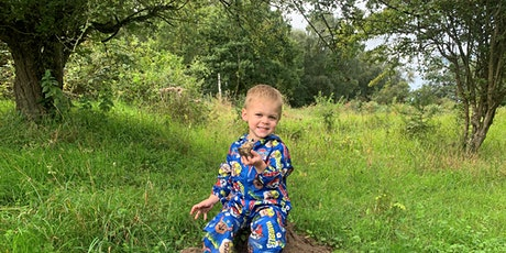 Wild Tots at Knettishall Heath - Tuesday 3rd August (P6P 2814) tickets